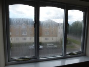 Broken down Double Glazed Units in Timber frames